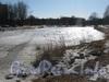 Парк «Александрино». Одно из озёр. Фото март 2012 г.
