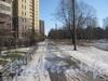Проезд параллельно границе парка Александрино и новостройкам по ул. Лёни Голикова. Фото март 2012 г.