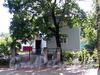 1-я Березовая аллея, д. 10. Общий вид. Фото сентябрь 2011 г.