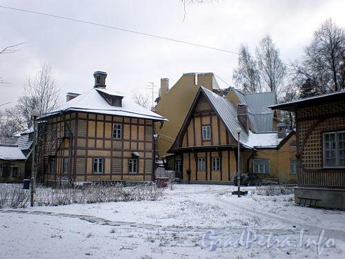 Боковая аллея, д. 11. Общий вид дома дачи П. И. Гозе. Фото декабрь 2009 г.
