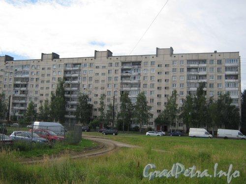 Придорожная аллея, дом 1. Вид со стороны Суздальского пр. Фото 22 июля 2012 г.