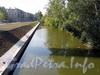 Черная речка на участке от Коломяжского моста в сторону нового моста в створе Карельского переулка. Фото август 2011 г.