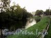 Черная речка на участке от Головинского моста в сторону Строгановского моста. Фото сентябрь 2011 г.