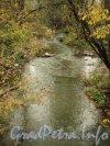 Река Каменка в районе Заповедной улицы. Фото октябрь 2011 года.