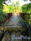 Река Малая Сестра. Пешеходный мост включающий в себя теплотрассу. Фото 4 июля 2013 г.