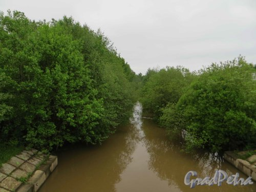 Река Оккервиль. Перспектива реки от Клочкова моста в сторону Долгорукова моста. Фото 25 мая 2013 г.