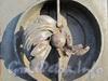 Менделеевская линия, д. 3. Элемент ограды здания НИИ Акушерства и Гинекологии им. Д.О. Отта до реставрации. Фото ноябрь 2011 г.