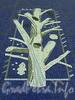 Станция метро «Озерки». Пол подземного зала украшен мозаичными панно на темы природы и отдыха. Фото декабрь 2011 г.