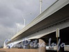 Вид моста Александра Невского от Малоохтинской набережной. Фото 2008 г.