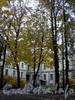 Наб. Лейтенанта Шмидта, д. 37. Дом А. П. Брюллова (Здание торгового дома «Губбард и К°»). Вид со двора. Фото октябрь 2009 г.