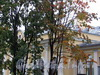 Наб. Мартынова, д. 70. Бывший особняк А.Н. Труворова. Фрагмент фасада. Фото сентябрь 2010 г.
