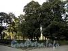 Песочная наб., д. 10. Сад. Общий вид с тыльной стороны. Фото сентябрь 2010 г.