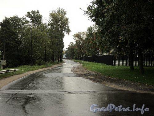 Перспектива набережной Мартынова от Гребного канала в сторону улицы Рюхина. Фото сентябрь 2010 г.