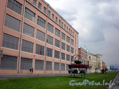 Пироговская наб., д. 13. Комплекс производственных зданий. Общий вид. Фото июль 2009 г.