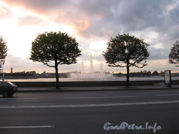 Вид фонтанов на Неве в октябре 2008 г.