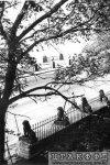 Свердловская наб., д. 40, лит. А. Ограда и терраса-пристань с гротом. Фото 1950-х гг. (из архива ЦГАКФФД СПб)