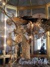 Дворцовая наб., д. 36. Малый Эрмитаж. Павильонный зал. Часы Павлин. Фото февраль 2012 г