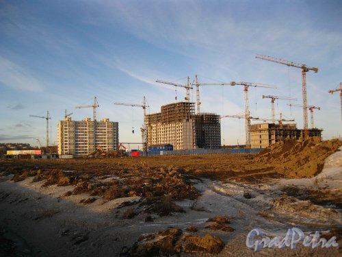 Пос. Кудрово, жилой комплекс «Семь Столиц». Строительство новых домов со стороны Новой улицы. Фото 24 марта 2013 г.