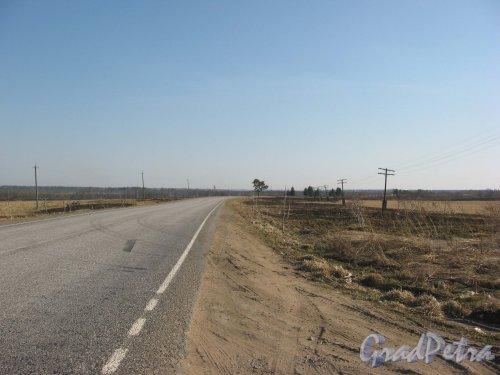 Лен. обл., Тосненский район, дорога от деревни Поги в сторону Лисино-Корпуса. Фото апрель 2009 г.