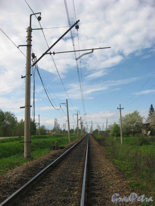 Лен. обл., Гатчинский р-н. Ж/д переезд в пос. Новинка. Фото май 2009 г.