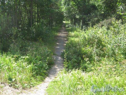 некоторых история возникновения поселка берёзово в лен области стремимся поддерживать