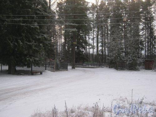 Лен. обл., Выборгский р-н, г. Приморск. Вид с Приморского шоссе в сторону кладбища. Фото 7 декабря 2013 г.