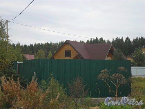 Поселок Решетниково, дом 53. Фото 23 сентября 2013 года.