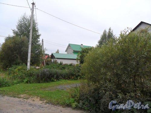 Поселок Решетниково, дом 64. Фото 23 сентября 2013 года.