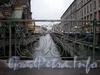 Фрагмент ограды Ново-Конюшенного моста. Фото октябрь 2009 г.