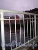 Фрагмент ограды Госткина пешеходного моста. Фото ноябрь 2009 г.