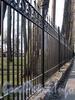 Фрагмент ограды Лопухинского сада со стороны улицы Академика Павлова. Фото апрель 2011 г.