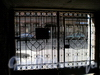 Колокольная ул., д. 16. Въездные ворота. Вид со двора. Апрель 2009 г.