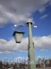 Иоанновский мост. Фонарь. Март 2009 г.