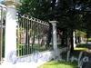 Ограда Василеостровского сада по Большому пр.у В.О. Фото сентябрь 2009 г.
