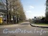 Безымянный проезд, соединяющий Северную и Южную дороги на Крестовском острове. На указателе он назван как «МеридиАнальная дорога». Фото май 2011 г.