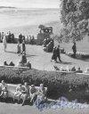 ЦПКиО имени С.М. Кирова. Уголок парка. Фотоальбом «Ленинград», 1959 г.