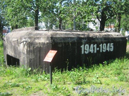 ДОТ «Рубеж «Ижора» » с нечётной стороны Кронштадтской ул. возле пересечения с Корабельной ул. Фото 13 июня 2012 г.