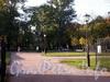 Вид на Сангальский сад со стороны улицы Черняховского. Фото октябрь 2009 г.