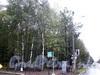 Вид на парк Сосновка с угла проспекта Мориса Тореза и улицы Витковского. Фото октябрь 2009 г.
