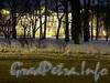 Михайловский сад. Вид на Русский музей от Марсова поля. Фото февраль 2004 г.