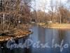 В Лопухинском саду. Фото апрель 2011 г.