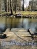 Лопухинский сад. Спуски к воде. Фото апрель 2011 г.