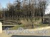 Фрагмент ограды Лопухинского сада со стороны Каменноостровского моста. Фото апрель 2011 г.