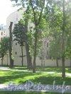 Сквер Андрея Петрова. Фото 7 июля 2012 г.