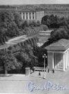 Сад Смольного. Фотоальбом «Ленинград», 1959 г.