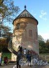 парк Павловский. Пиль Башня. Фото октябрь 2012 г
