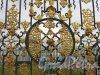 г. Пушкин, Садовая ул, дом 9. Большой Екатерининский дворец. Екатерининский парк. Дворец сквозь ограду. Фото август 2005 г.
