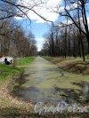 Александровский парк (г. Пушкин). Обводный канал. Фото май 2012 г.