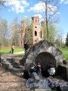 Александровский парк (г. Пушкин). Арсенал и Источник. Фото май 2012 г.