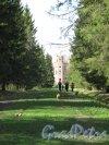 Александровский парк (г. Пушкин). Арсенал. Вид с аллеи парка. Фото май 2012 г.